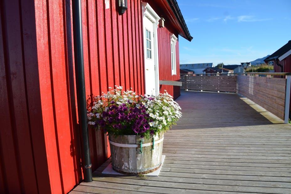 Yes Seafishing Pynt Med Blomster Dsc 7195 1